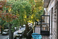 2 rooms in 6.5 available near Station Mont-Royal, January-March