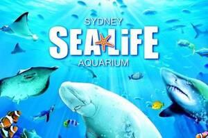 1x Sydney Aquarium Vouchers tickets Darling Harbour - RRP $40 Lane Cove North Lane Cove Area Preview