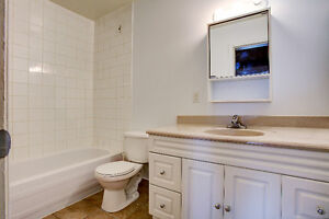 STUNNING! RENOS! 3 LEVEL TOWNHOUSE FOR RENT (2&3 BEDROOMS AVAIL