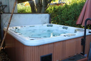 Cal Spa hot tub for sale