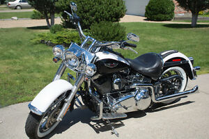 2007 Harley Davidson Softail Deluxe - Low KMs - See & Hear Video