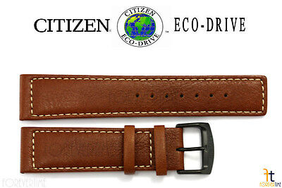 Citizen Eco-Drive BM8475-26E 22mm Brown Leather Watch Band Strap E101-S064783 (Citizen 26e)
