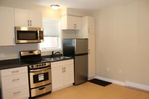 Beautiful Bachelor Apartment - 12 Month Lease - May 1st