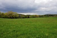 Looking for 1 to 50 acres around Watford
