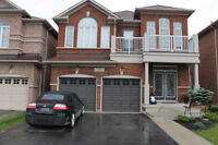 **One bedrm Basement Apartment at Countryside & Sunny Meadow**