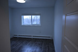 Must See Renovated top to toe 2 Bed Suites  insuite Laundry Kitchener / Waterloo Kitchener Area image 5