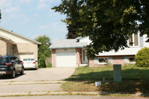 4 Bedroom House  For Rent $ 1975