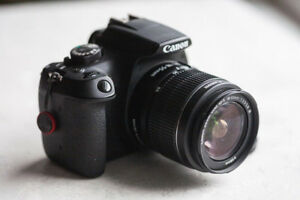 Canon Rebel T6 and 2 Lenses