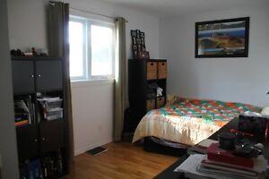 Available: Nice 2 bedroom close to all amenities Gatineau Ottawa / Gatineau Area image 4