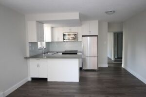 1Br in the West End with spectacular Rooftop Deck and pool