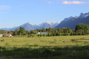 Condo in Fernie available for short term/summer rental