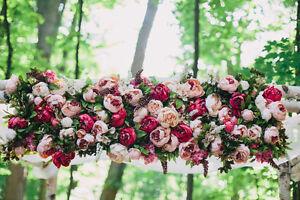 Birch Wedding Chuppah Rental Cambridge Kitchener Area image 3
