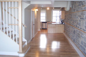 Downtown 1 Bedroom Loft Apartment Next to Waterfront