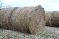 Round Flax Straw Bales For Sale.