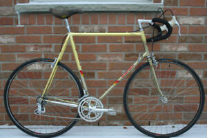 Gardin Team Classic Road Racing Bicycle Full CAMPAGNOLO.