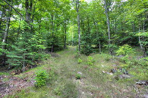 BEAUTIFUL LOT WITH DRILLED WELL ONSITE! Peterborough Peterborough Area image 9