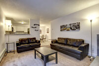 Downtown Eau Clair 2 bedroom renovated condo-Furnished