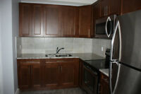 Beautiful, Spacious - Furnished ,2 Bedrooms, 1 Washroom for rent