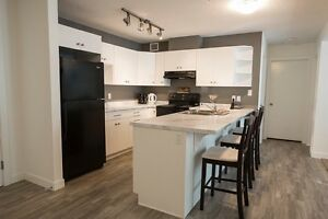 Airdrie 2 bedroom 1 bathroom apartment pet friendly! Large dogs