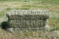 Horse hay for sale - square bales