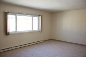 One Bed Room Apartment available for sublet in May
