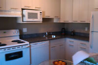 Renovated St. Vital apartment for roommate
