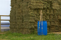 HAY FOR SALE - Square and Round - Excellent Horse Hay