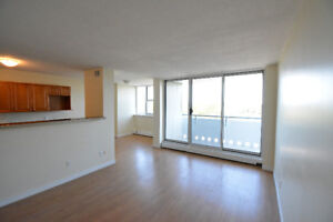 Beautiful Renovated 1 BD - Sept 1st - LeMarchant Towers
