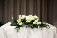 Professional Photographer Very Good Price On The Wedding Package