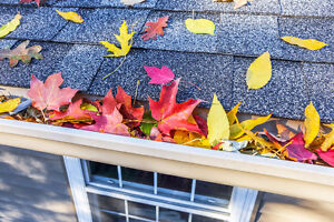 Eavestrough Cleaning Service Kitchener / Waterloo Kitchener Area image 1
