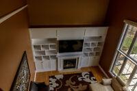 Custom Built-ins Custom Cabinets Built-in Guy Closet Wall Unit