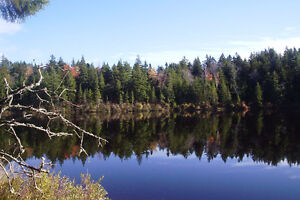 Waterfront & Lake Access Cottage Area Lots