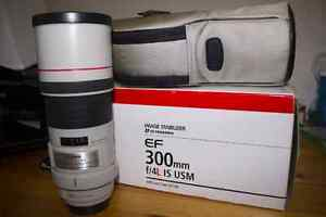 Canon EF 300mm F4L IS excellent condition w/ polarizing filter