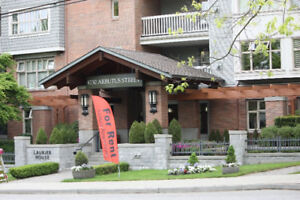 2 Bedroom apartment at Arbutus St. and W 33rd Av
