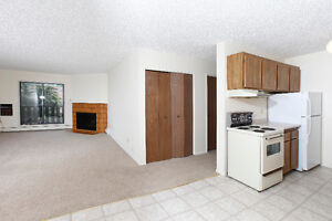 Free April Rent. Amazing 3 bedroom with lot of Space