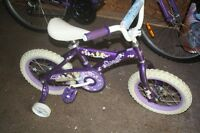 14 inch Princess Bike with training wheels