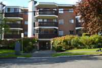 Temporary / Vacation Rental near Downtown Victoria