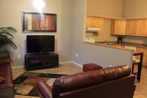 Executive Style Fully Furnished 2 & 3 Bedroom Suites
