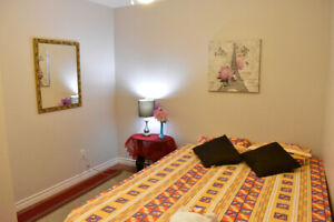 One Bedroom Furnished Suite with Wifi and Parking