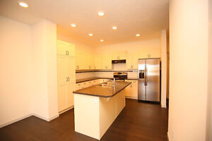 Edmonton South New Roomy Home for Rent