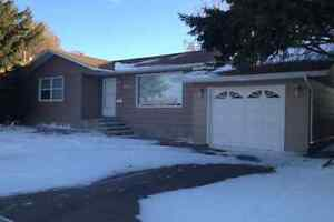 Large 2 bdrm basement suite in Palliser area