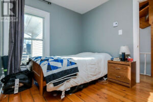 All inclusive room for rent grad student home downtown Kingston!