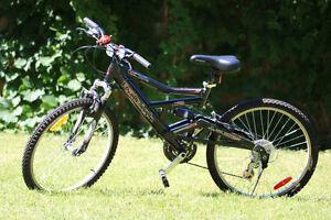 Raleigh Tora 21 Speed