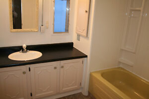 For Sale: Mobile home with recent upgrades Strathcona County Edmonton Area image 6