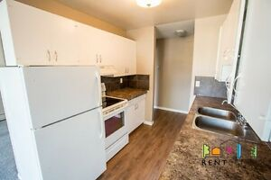 Recently Renovated 2 Bedroom Apartment Available Immediately!