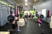CrossFit classes in Milton!  Get into the best shape!