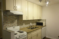 Fully Renovated Furniture 1 BR Condo Walking distance to downtow