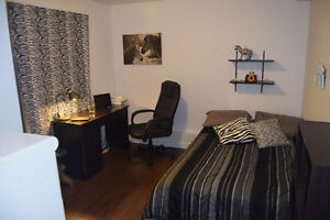 3 Bedroom - Great Location - FULLY FURNISHED Kitchener / Waterloo Kitchener Area image 3