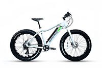 2016 Surface 604 Boar E350- Electric Bicycle/ Fat Bike