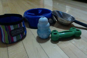 Slow-Feed bowl, Travel water bowl, Scoop & Kong Toys (small dog)